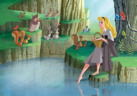 Princess Cinderella Wall Mural Photo Wallpaper